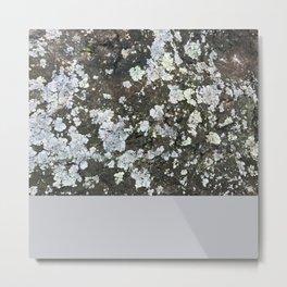 Bolor Off White Metal Print