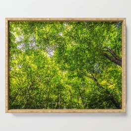 Scenic Caves Trees Serving Tray