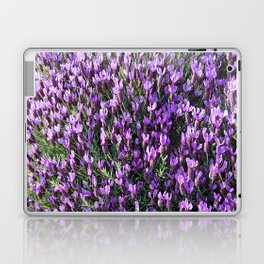 SPANISH LAVENDER AND ONE BEE Laptop & iPad Skin