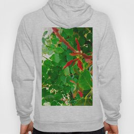 Roses Leaves Photography Hoody