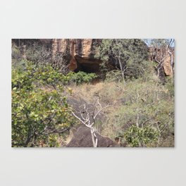 Cave in the Nature Canvas Print
