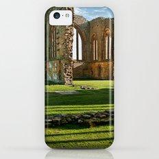 Egglestone Abbey Slim Case iPhone 5c