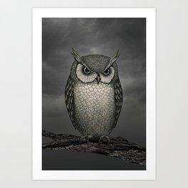 An Owl Art Print