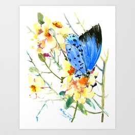 Holly Blue Butterfly and Yellow Flowers Art Print