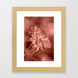 Through Rose Colored Glasses Framed Art Print