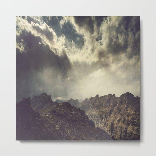 wild land Metal Print
