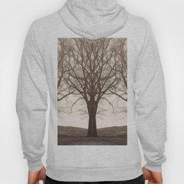 The Mirrored Trees Hoody