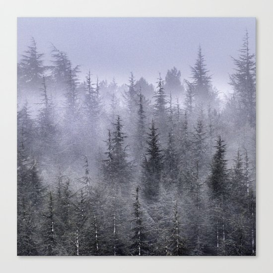 Looking for...... Canvas Print