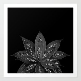 Gray Black Agave with Black Silver Glitter #2 #shiny #tropical #decor #art #society6 Kunstdrucke