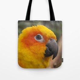 Sun conure parrot Tote Bag