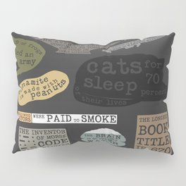 22 Facts - Useful Facts Pillow Sham