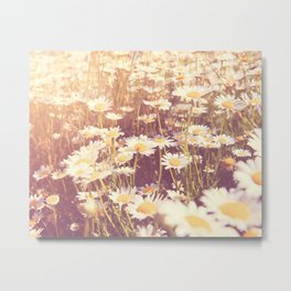 flowers. daisy photograph, We Need Each Other Metal Print