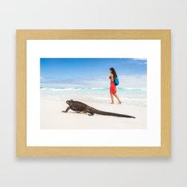 Galapagos wildlife beach Framed Art Print