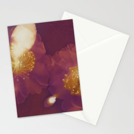 camelias Stationery Cards