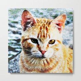 Young Yellow Cat Metal Print