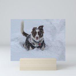 Rowen in Snow Mini Art Print