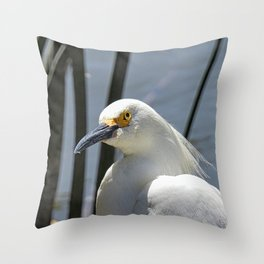 At A Glance Throw Pillow