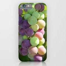 Wine on the Vine Slim Case iPhone 6s