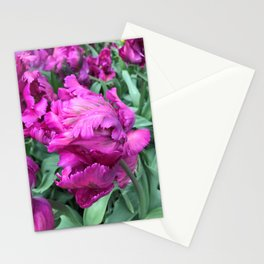 Double Purple Parrot Tulip Stationery Cards