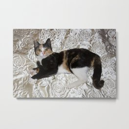 Thank You For Helping Me Metal Print