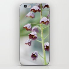 Bells iPhone & iPod Skin