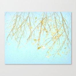 November Tree with Powder Sky II - Fine Art Photo Print Canvas Print