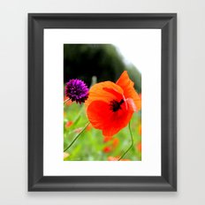 wild poppies Framed Art Print