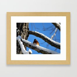 You talkin to me? Framed Art Print
