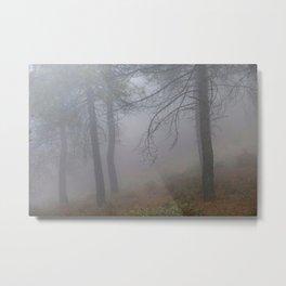 """Dream forest"". Living in a dream... Metal Print"