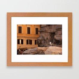 Trevi Seagull Framed Art Print