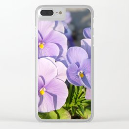 Purple viola in sunlight Clear iPhone Case