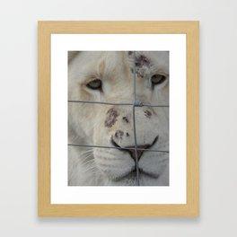 Jambo Nala! Framed Art Print