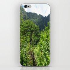 HAWAII BIG ISLAND HORSE iPhone & iPod Skin