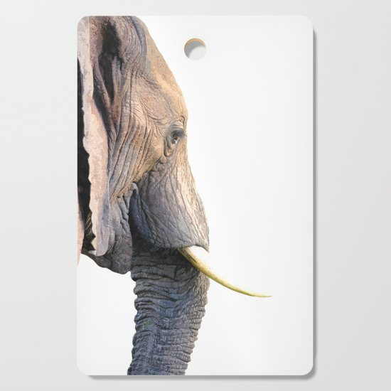 Elephant portrait by alemi