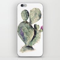 cactus iPhone & iPod Skins featuring CACTUS by Annet Weelink Design