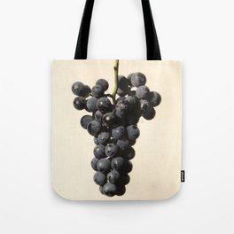 Vintage Concord Grapes Illustration Tote Bag