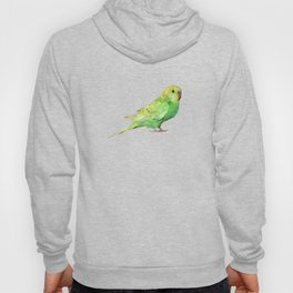 Geometric green parakeet Hoody