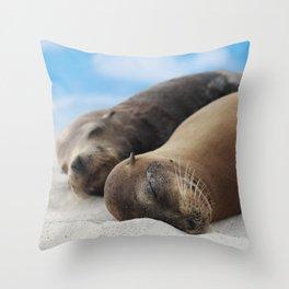 Galapagos Sea lions family sleeping on beach Throw Pillow