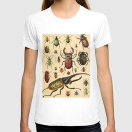 Popular History of Animals Beetles Vintage Scientific Illustration Educational Diagrams T-shirt