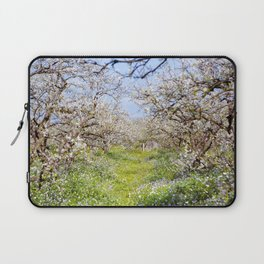 Plum flower, Photo Plum flower, Plum flower hill, beautiful view, Poster print, Canavas Print Laptop Sleeve