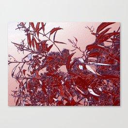 Rojas Canvas Print
