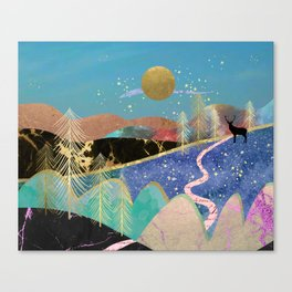 Magical starry night Canvas Print