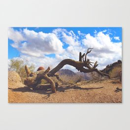 Hiking in Arizona Canvas Print