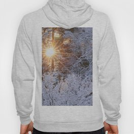 Winter Sun Shine Through Snowy Tree Branches #decor #society6 #buyart Hoody