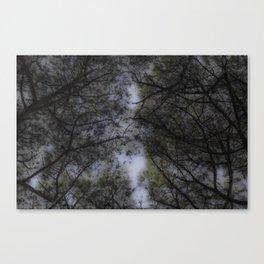 TREE 3 Canvas Print