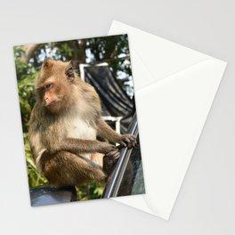 Koh Chang Monkey Stationery Cards