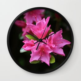 Pink Azelaea Spring Flowers Pretty Flowers Blossoms Nature Flora Wall Clock