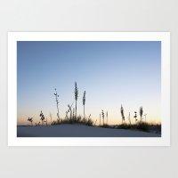 White Sands Sunrise Art Print