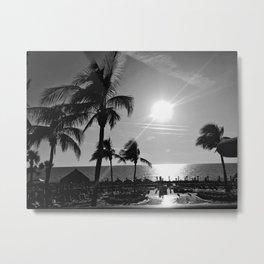 Floridian Palms Metal Print