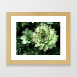Green Chickens 3 Framed Art Print